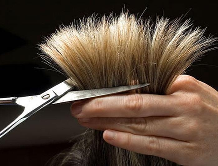 Problem łamliwych końcówek włosów